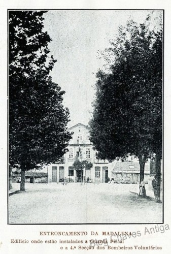 madalena1_1914.jpg