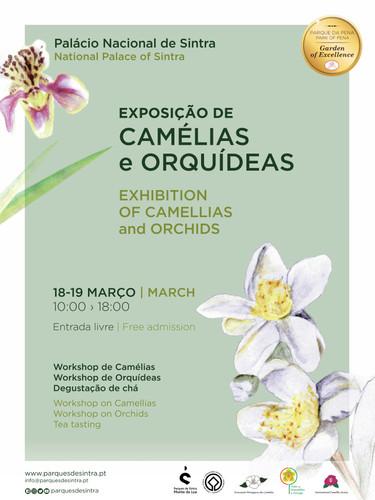 Cartaz_Expo_Camelias_e_Orquideas.jpg
