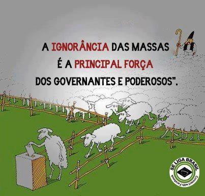 A ignorância das massas