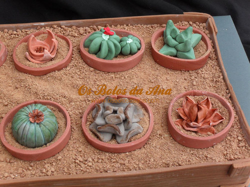 Bolo Artistico Jardim de Cactus