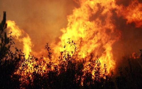 incendio-800x500.jpg