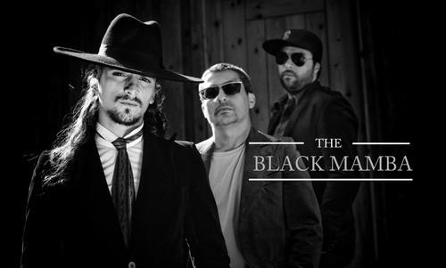 the black mamba.jpg