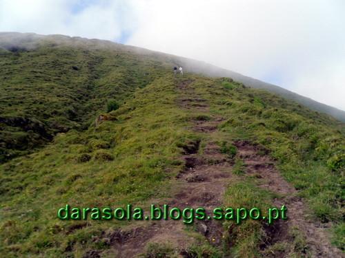 Azores_Faial_caldeirao_15.JPG