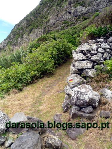 Azores_flores_faja_grande_04.JPG