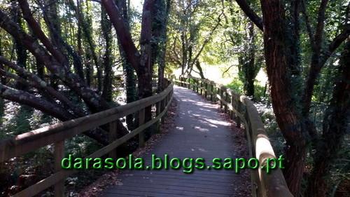 ribeira_uima_06.jpg