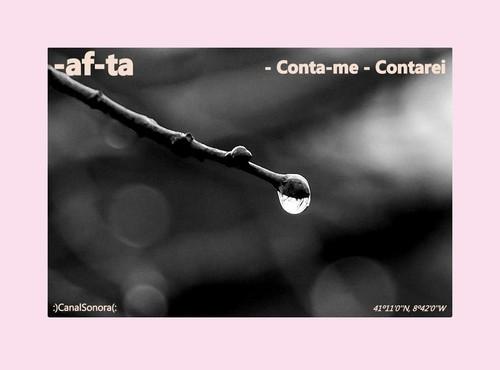 CAPA (2).jpg