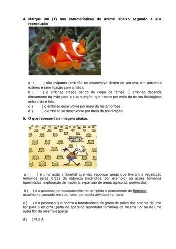 3-atividade-avaliativa-de-cincias-4-ano-pdf-2-638.