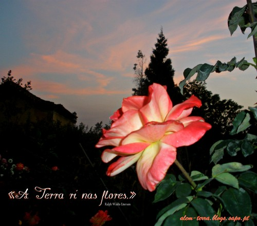 «A Terra ri nas flores.»  Ralph Waldo Emerson