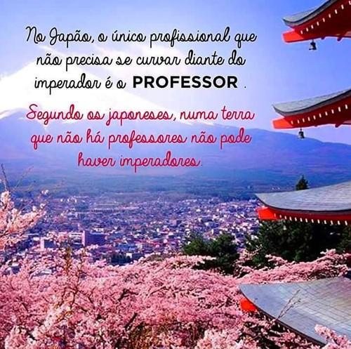 professores2.jpg