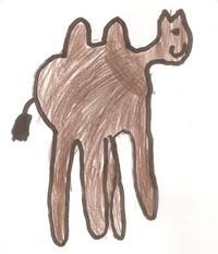 camelo 002