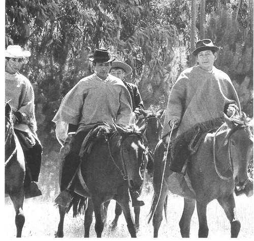 o mundos dos índios mapuche 8 001.jpg