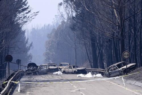 IncendioPedrogaoGrande2.jpg