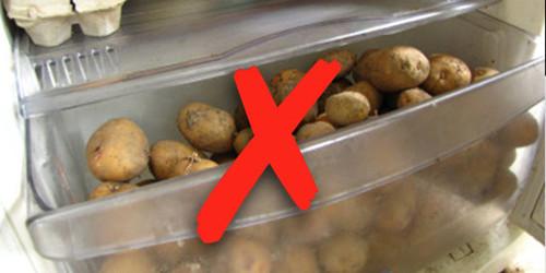 potato-fridge.jpg