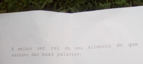 plg4.jpg