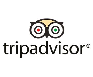trip-advisor-png.png