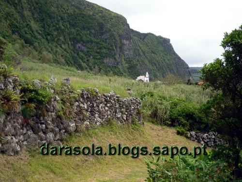 Azores_flores_faja_grande_05.JPG