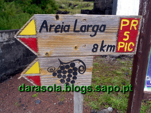 azores_pico_criacao_velha_45.JPG