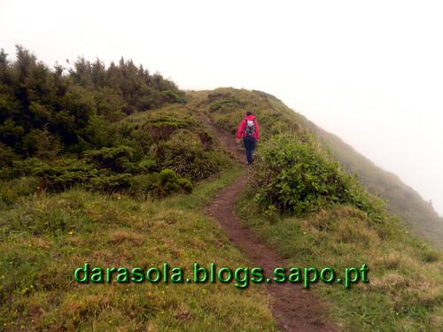 Azores_Faial_caldeirao_26.JPG