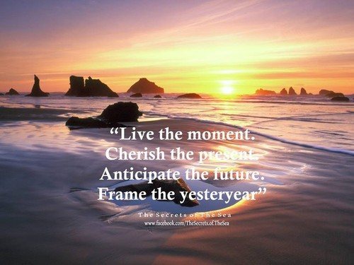 Vive o momento