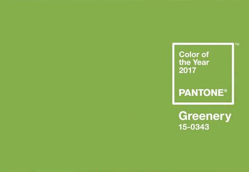 170110_pantone1.png