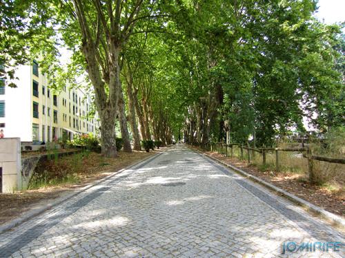 Jardim do Polis Leiria (Centro) - Via (2) [en] Polis Garden of Leiria, Portugal