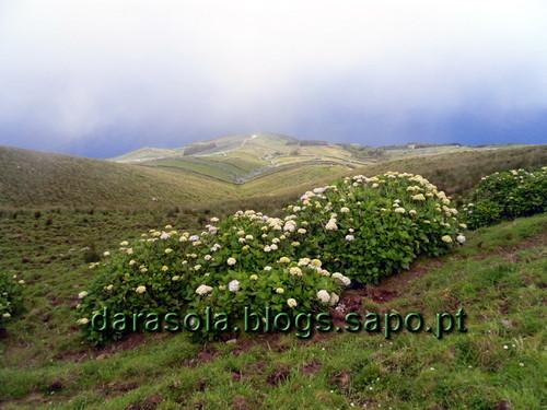 azores_corvo_caldeirao_20.JPG