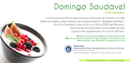 12-09-2017-Flyer Domingo saudável.jpg