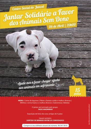 Pelos animais sem dono...