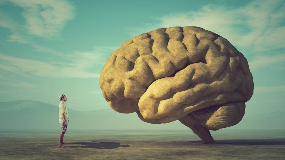 Cerebro-Olhar.jpg