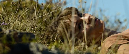 09-zvizdan-trava.jpg