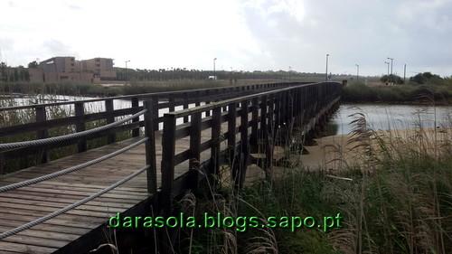 Praia_grande_13.jpg