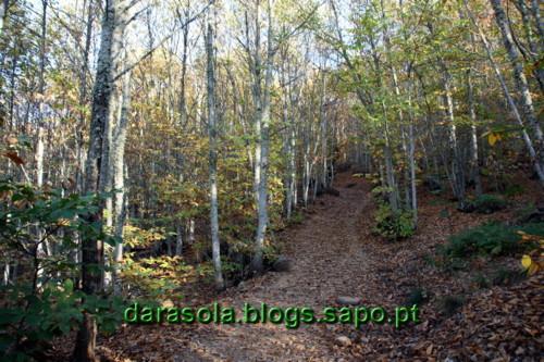 Las_medulas_32.JPG