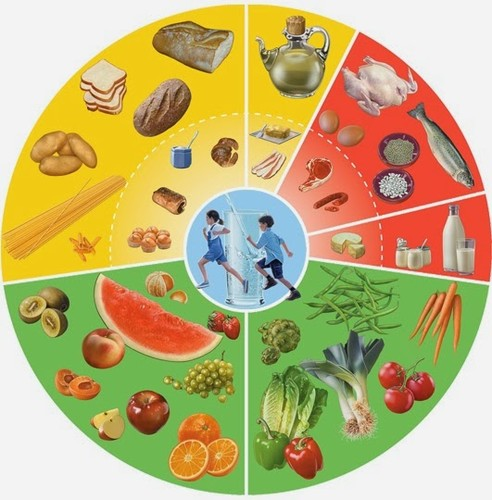 THE FOOD WHEEL[1].jpg