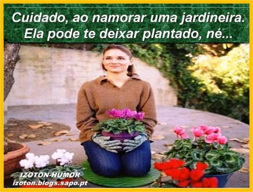JARDINEIRA.jpg