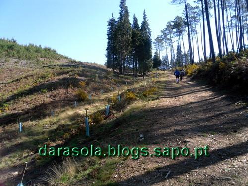 VLC_Paraduca_17.JPG