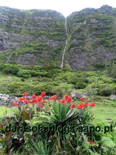 Azores_Flores_PocoBacalhau_18.JPG