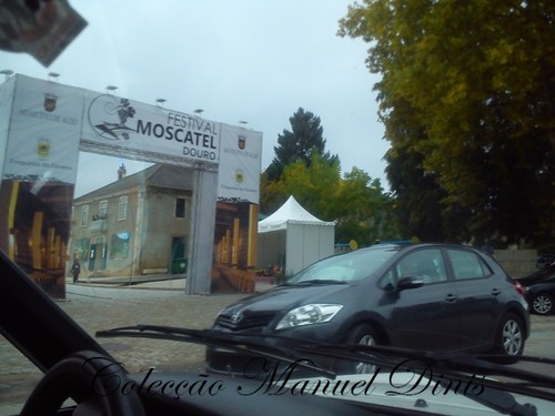 2ª Rota do Moscatel 2016 Favaios  (259).jpg