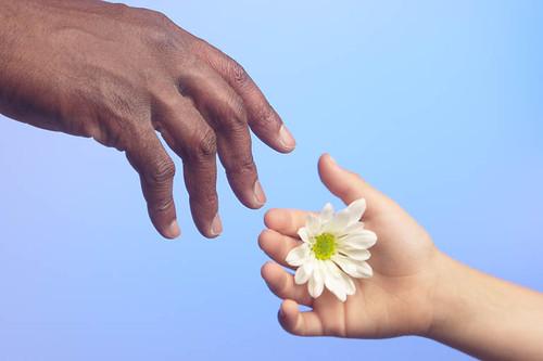 Person offering flower1.jpg.jpg