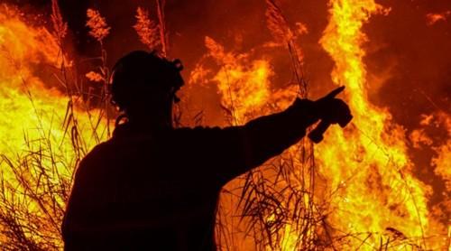 incendiosOUT2017.jpg