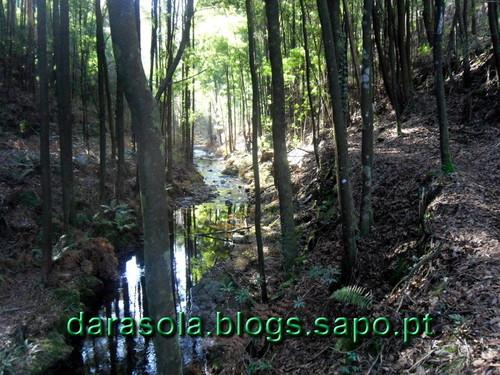 Albergaria_tres_rios_33.JPG