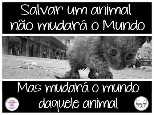 Salvar um animal