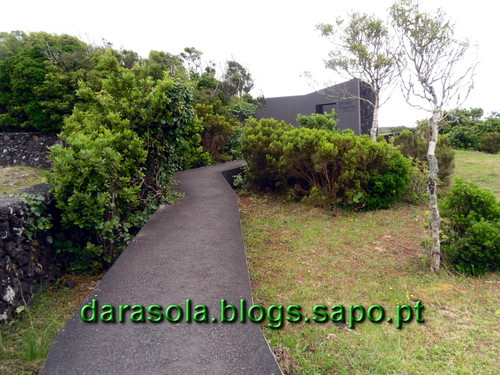 azores_pico_gruta_torres_01.JPG