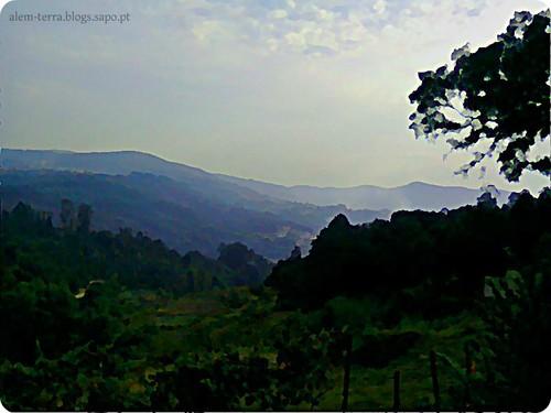 Búzio, Macieira de Cambra, 17 de Oitembro de 2011