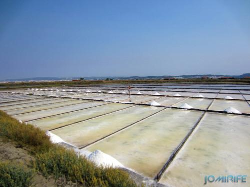 Salinas da Figueira da Foz (7) Campos de sal [en] Salt fields of Figueira da Foz in Portugal