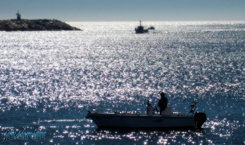 Pescando em barcos na Figueira da Foz [en] Fishing in boats in Figueira da Foz