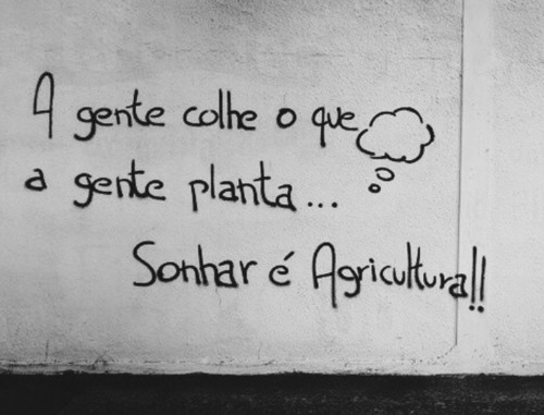 Grafiti-SonharAgricultura.jpg