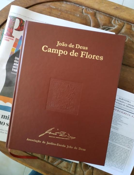 joao de deus campo de flores (2).jpg