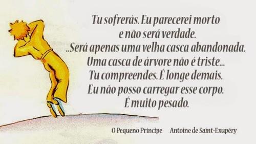 frases-de-livros-o-pequeno-príncipe-antoine-exupe