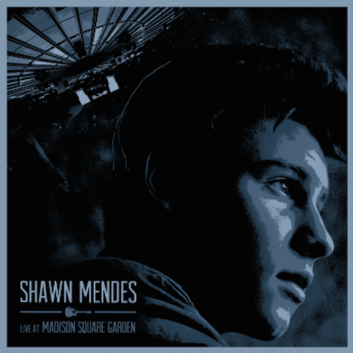 shawn mendes.png