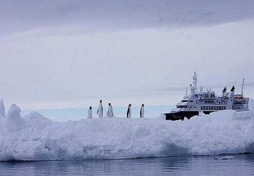Antarctica_25-1.jpg